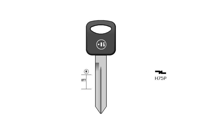 car key Messing plastic head KL-H75P#K041 S-FO40RBP BO-534 JMA-FO-15DP